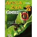 Άγρια ζώα - Κάμπιες Τόμος 8 (DVD Το τροπικό δάσος της βροχής)